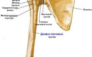 Перелом плечевого сустава
