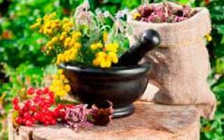 Лечение остеохондроза народными средствами народная медицина