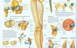 Как лечить коленный сустав в домашних условиях