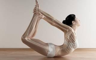 Какие упражнения используются на гибкость позвоночника